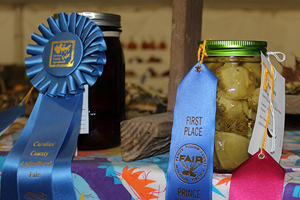 Registration is open for State Fair competitions