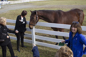 Insider information draws visitors to Secretariat tours