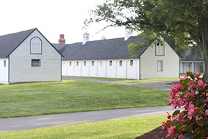 Secretariat tours at historic birthplace offer insider information