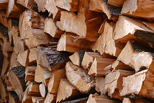Buy and burn local firewood