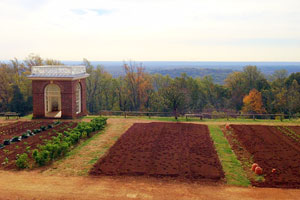 Monticello's agrarian roots still growing today