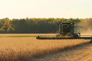 Va. soybean farmers hurt by Chinese trade tariffs
