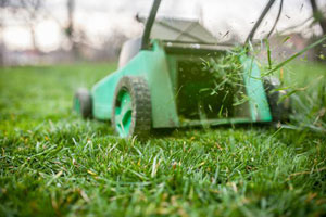 Fall maintenance pays off with lush spring lawn