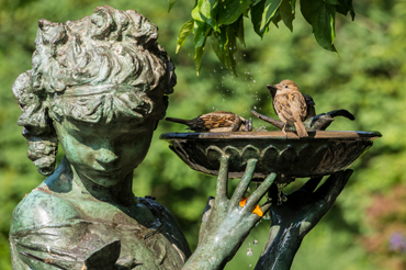 Accessorize your garden with statuary, bird baths this spring