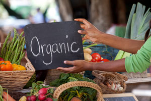 Organic food producers, handlers eligible for certification cost share reimbursements