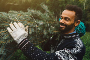 Make the holidays last longer—plant your Christmas tree