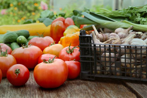 State shares guidelines for new food crop donation tax credit