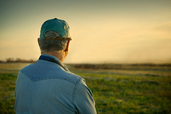 A Virginia farmer looks out over his field